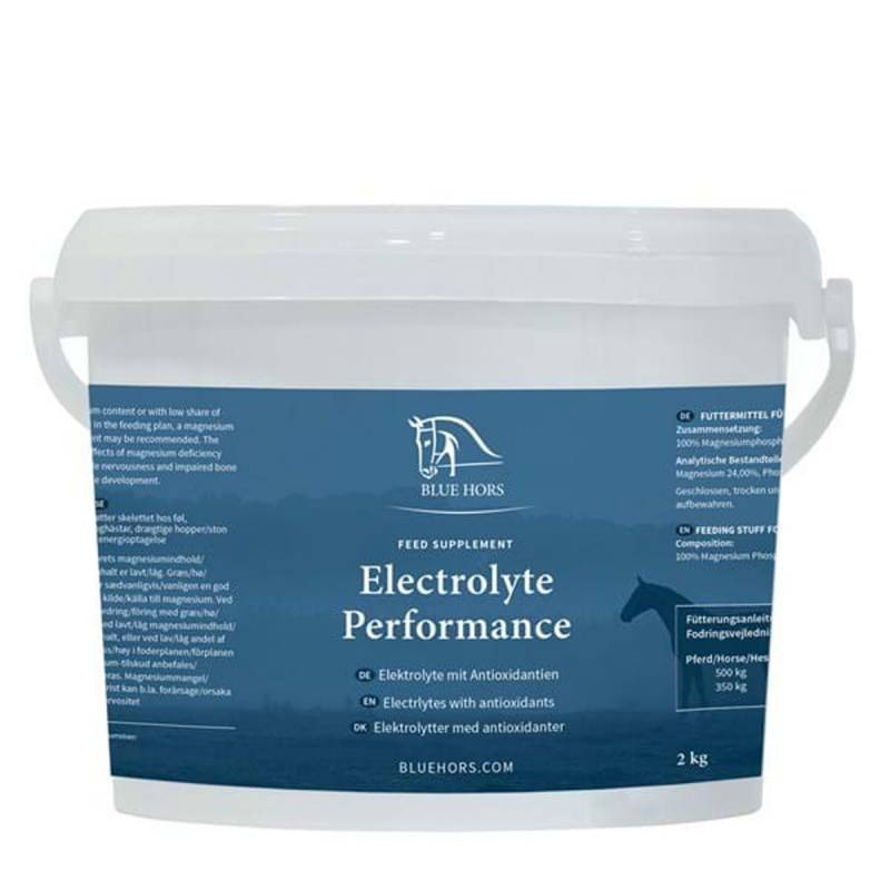 Electrolyt Performance 25 x 30 g