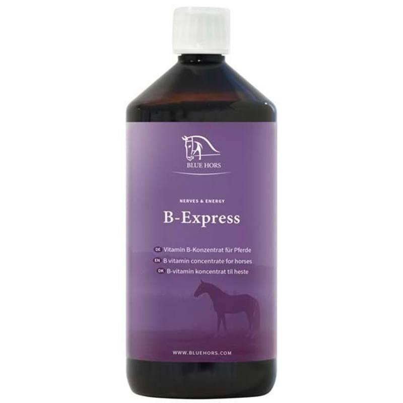 B-Express 1l