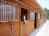 Test af strøelse til hesteboksen